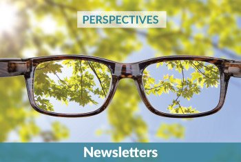 Accounting Perspectives Newsletters