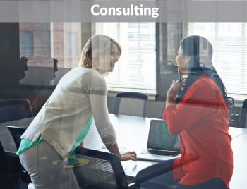 Virginia Consulting Services