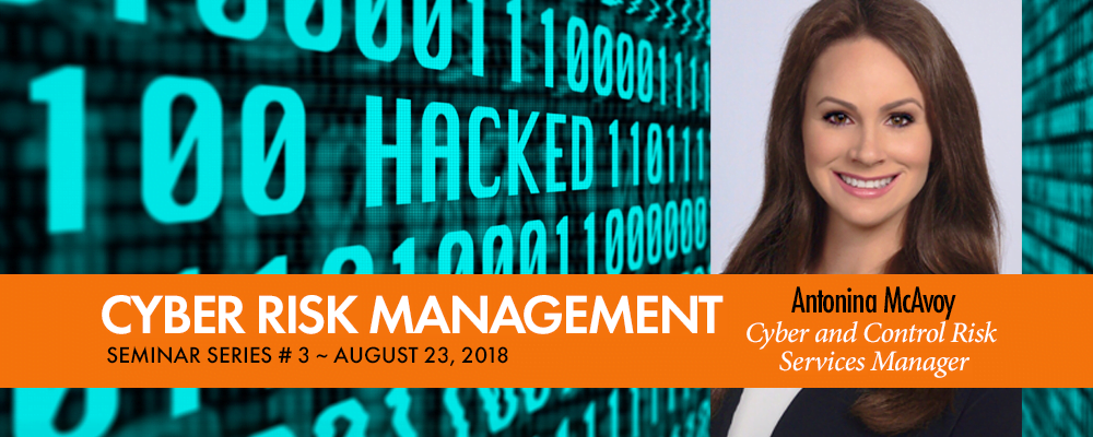 Cybersecurity Risk - Fairfax CPA