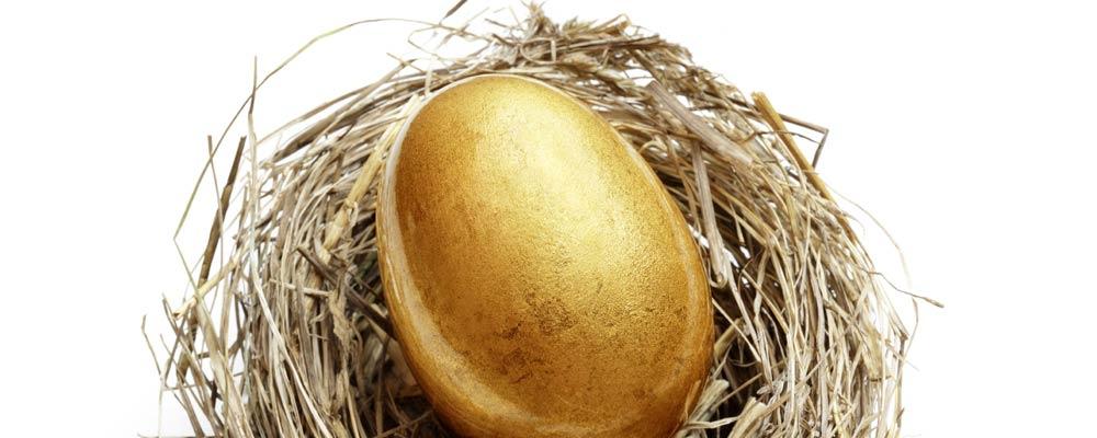 retirement savings nest egg
